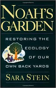 Noah_s Garden