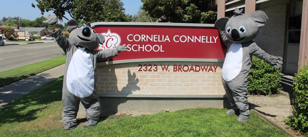 Koalas at sign