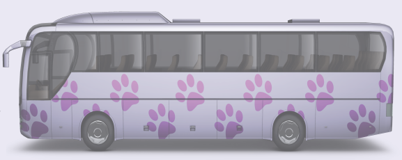 SCAF Bus