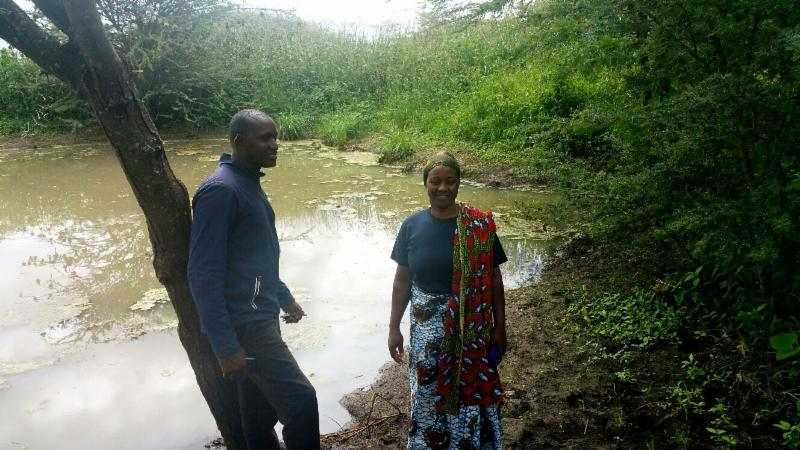 ICSEE pilot water project