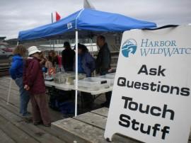 pier, sign, Harbor WildWatch