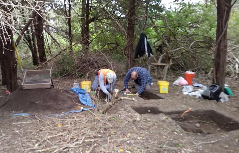 nickerson excavation