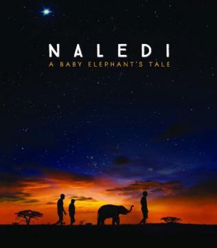 Naledi_ A Baby Elephant_s Tale