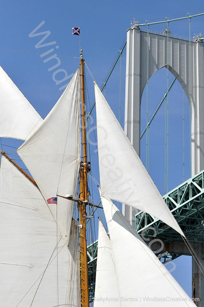 Eleanora sails under the Newport Bridge