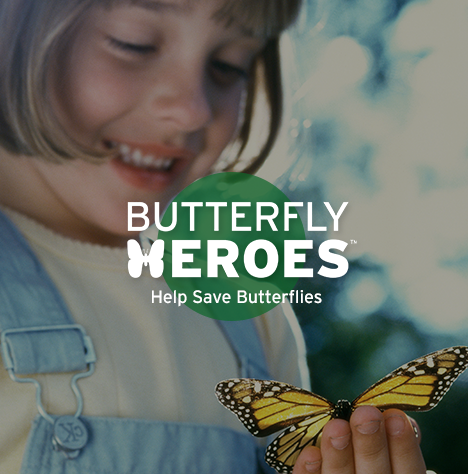 A girl with a butterfly on her hand with Butterfly Heroes logo.