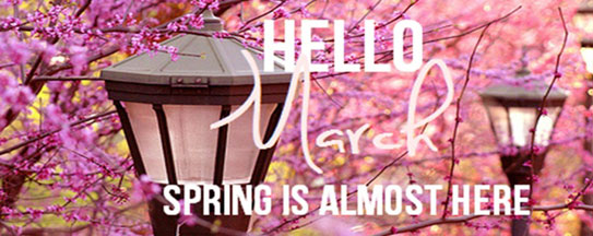 Hello March - Spring is almost here!