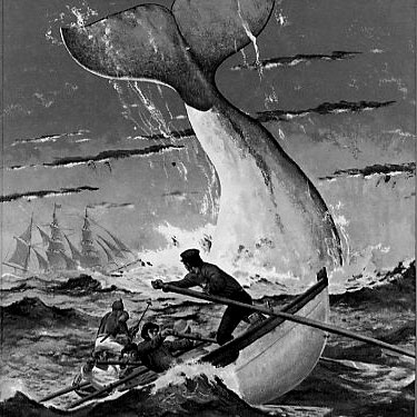 Herman Melville's classic novel Moby Dick, 1851