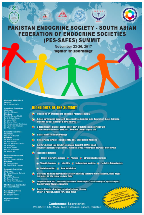 SAFES 2017 Announcement