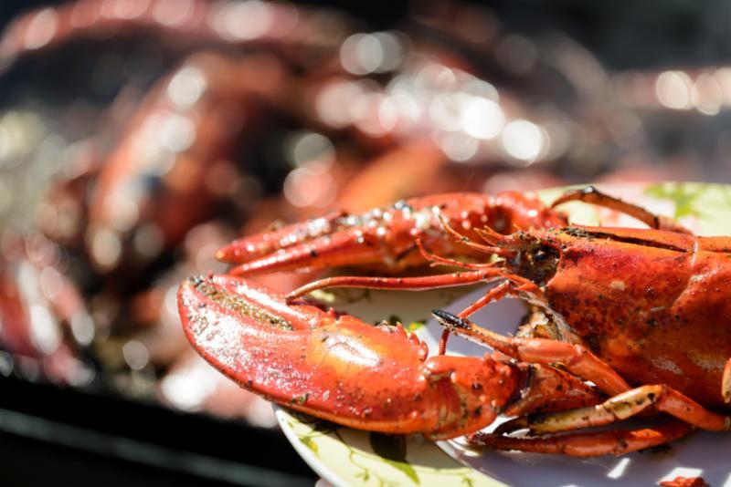 lobster_grill.jpg
