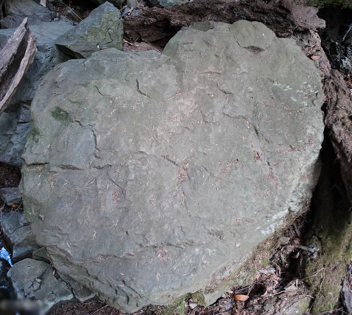 Stone Heart by Petra Loewen