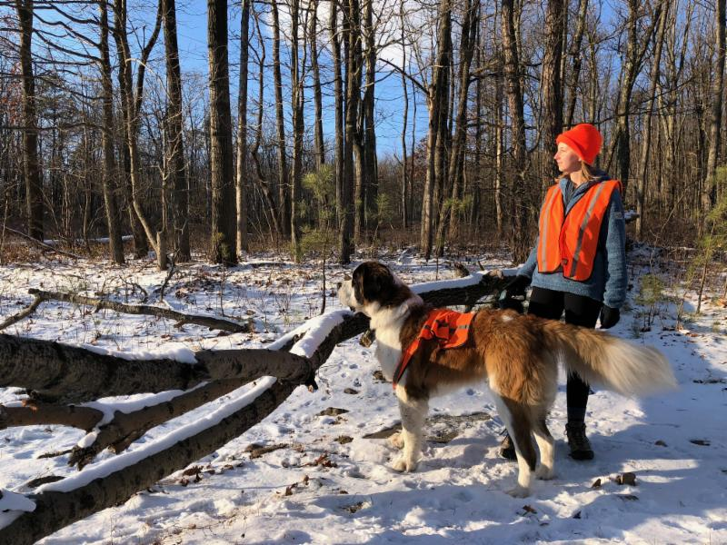 Hiking and Hunting on PHLT Nature Preserves