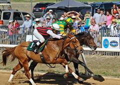 Aiken horse racing