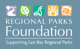 new RPF logo