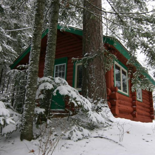 National Forest Lodge - Cabin 8