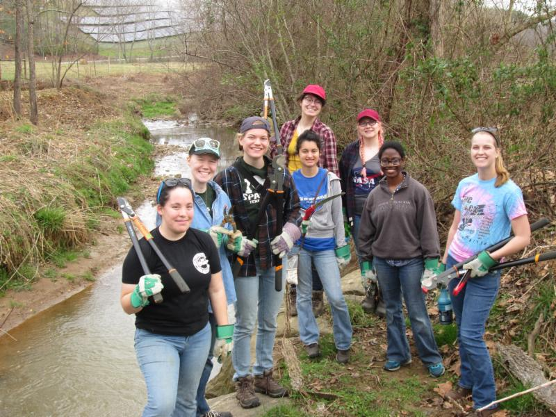 Students beside a stream with loppers and other hand tools