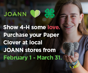 JOANN Paper Clover campaign