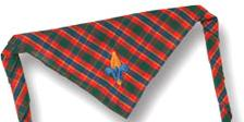 Webelos Neckerchief