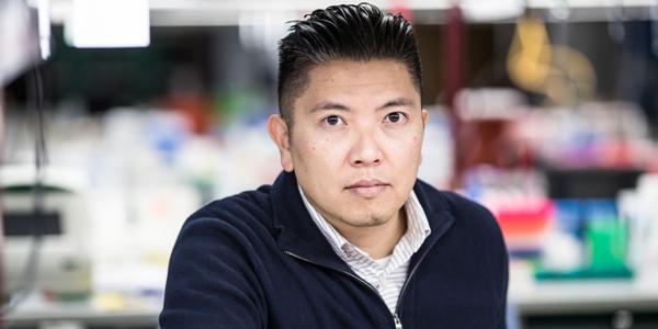 Duc Dong, Ph.D.