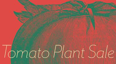 March 10-12 – Tomato Plant Sale Coming Up