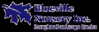 bluevillenursery.com