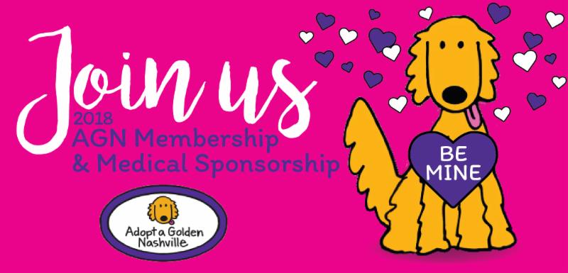 Join us _ 2018 AGN Membership _ Medical Sponsorship