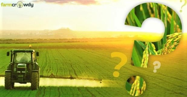 ag questions_ farmcrowdy.com