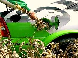 biofuels solar1.org