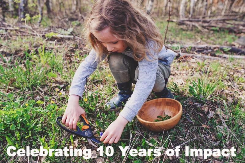 child girl exploring nature in early spring forest. Kids learning to love nature. Teaching children about seasons changing. Warm weather.     Note  Shallow depth of field
