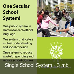 Single School System - a 3 mb download