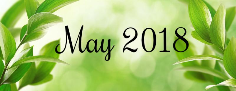 Spring or summer season abstract nature background with green leaves_ grass and wooden floor