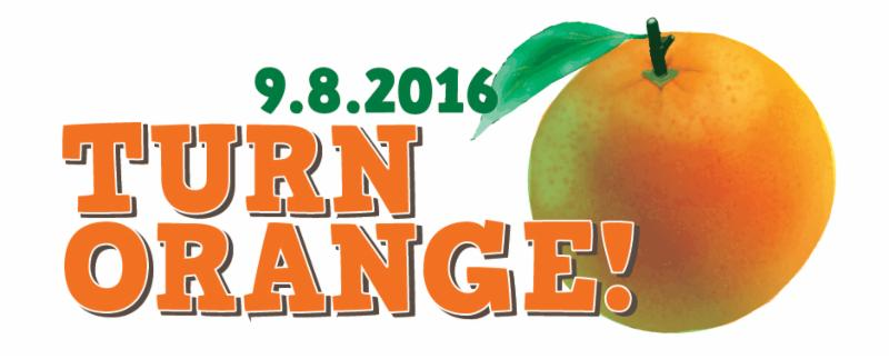 Wear orange, snap pix, share with FOVFB and earn 2017 LFF points