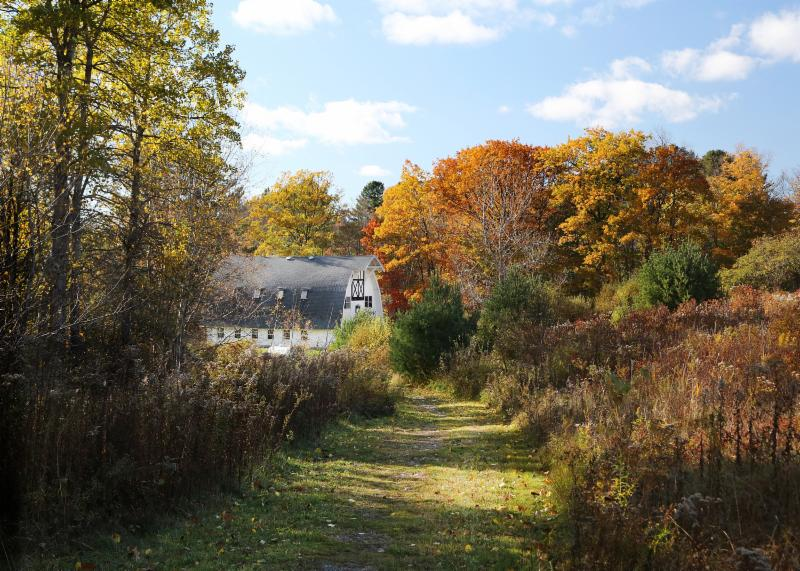 A wide, grassy path cuts through an autumn woods with a large white barn down the path to the left.