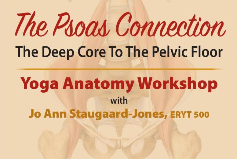 The Psoas Connection - Yoga Anatomy Workshop ONLY A FEW SPOTS LEFT!