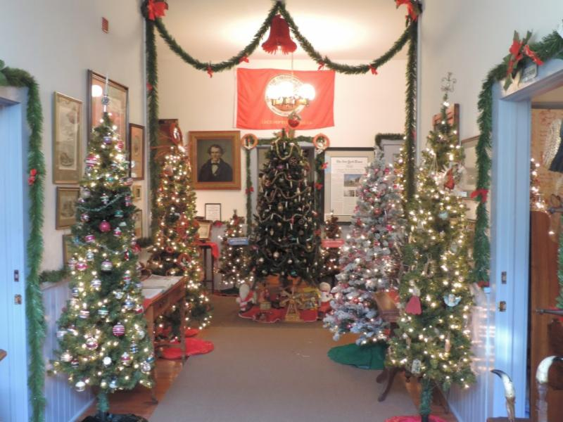 Most unique display of christmas trees at lecomptons territorial