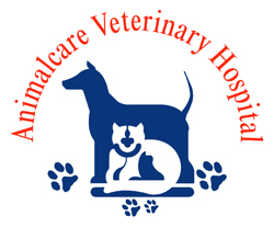 Animalcare Veterinary Hospital