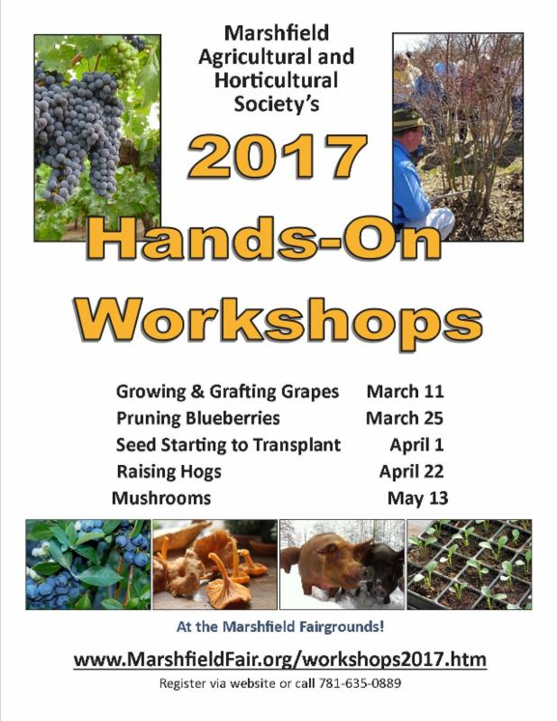 2017 Hands on Workshops