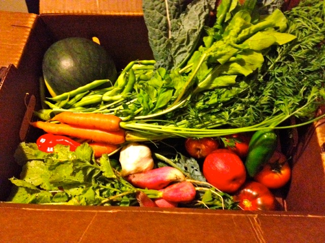 Small Veggie Box