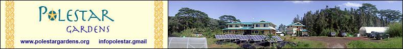 polestar top banner