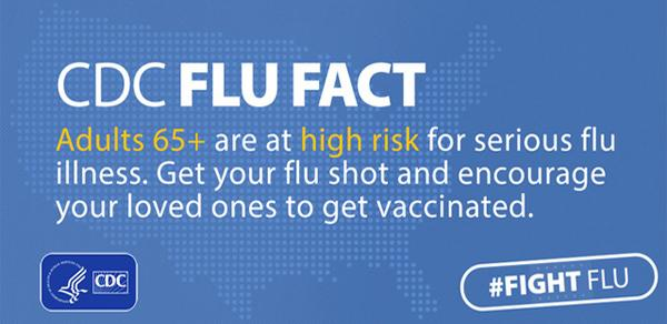 CDC Flu facts