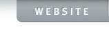 ms website tab