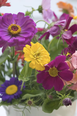 asst-flowers.jpg