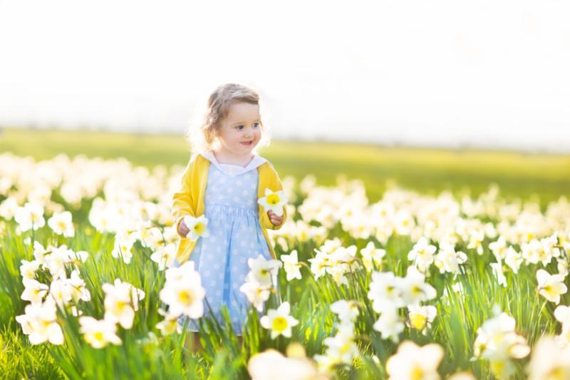 toddler_in_daffodil_field.jpg