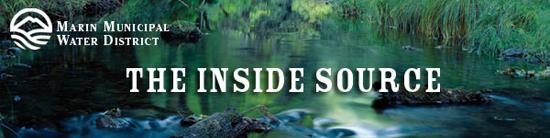 Inside Source Summer Banner