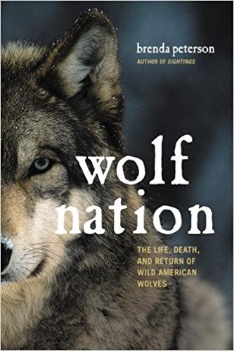 Wolf nation book cover
