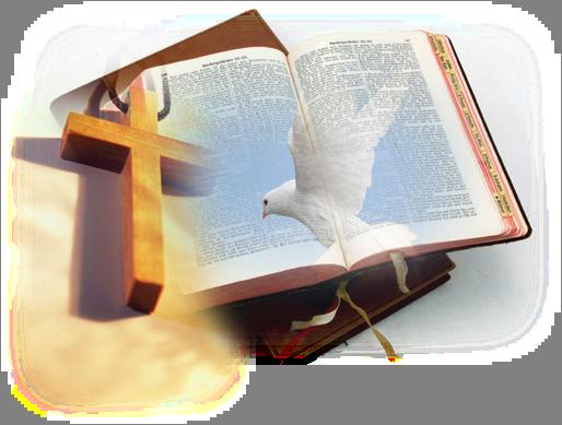 Bible Dove Cross