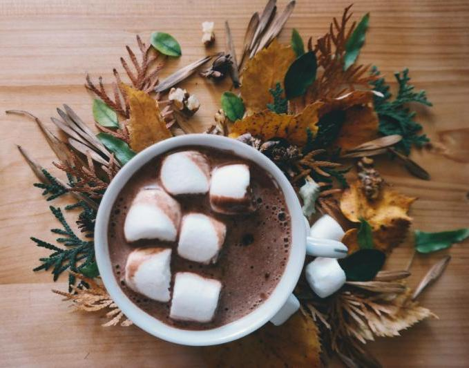 hot chocolate_ leaves