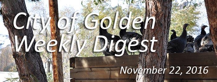 November 22 Weekly Digest