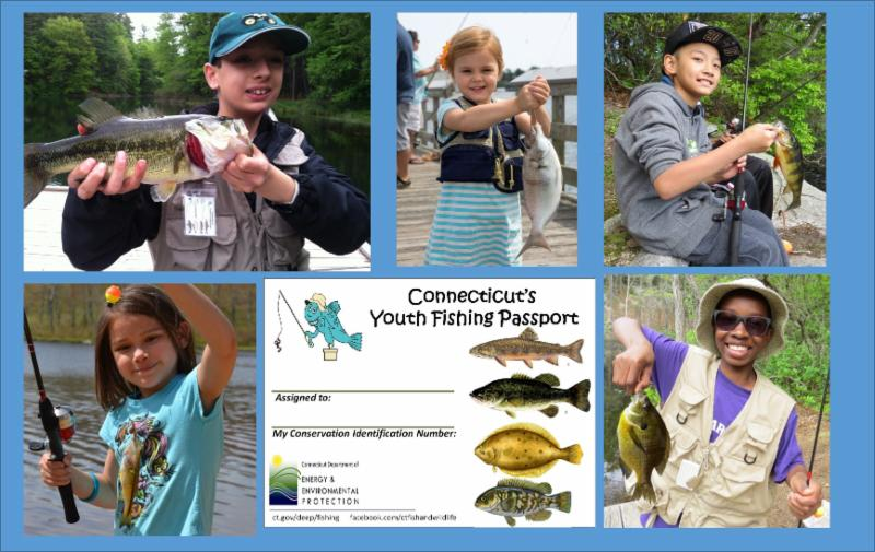 Connecticut youth fishing passport for Renew fishing license