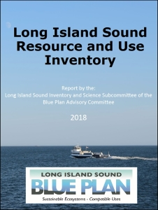 Cover Page of LIS Blue Plan Inventory