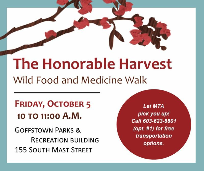 Wild Food and Medicine Walk flyer